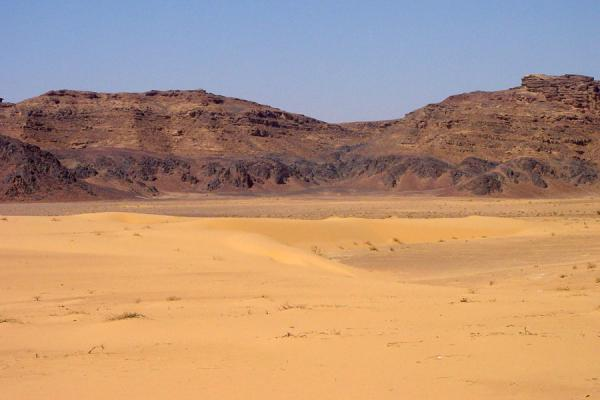 Photo de Sanddunes and rocky mountains in Wadi RumWadi Rum - Jordanie