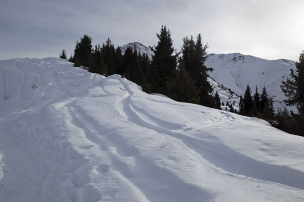 Foto van Snowy slopes at lower altitude on the way up to FurmanovkaFurmanovka - Kazakhstan