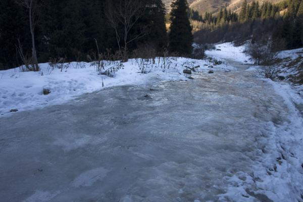 Picture of An icy path leading up Kim-Asar valley