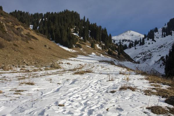 Picture of Kim-Asar hiking (Kazakhstan): Snow and sun on the open section of Kim-Asar valley
