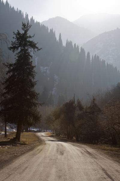 Picture of Easy start: road leading from Medeo into the Kim-Asar valley