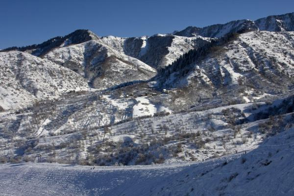 Picture of Tabagan Skiing (Kazakhstan): Fresh snow on the mountains of Tabagan
