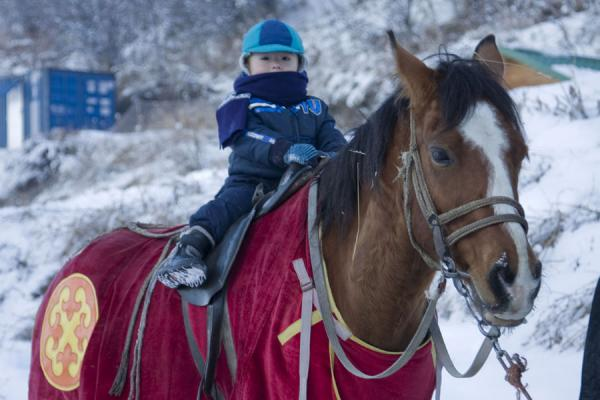 Picture of Tabagan Skiing (Kazakhstan): Horse with Kazakh boy near the ski slope of Tabagan
