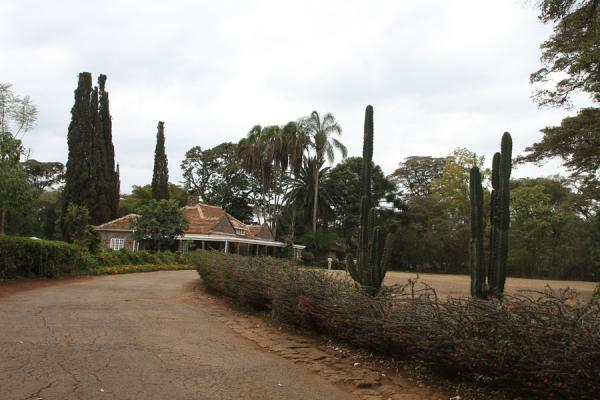 Lane leading to Karen Blixen house | Karen Blixen house | Kenya