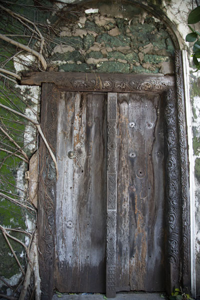 Foto van Old wooden door  with roots in a building in the old town of MombasaMombassa oude stad - Kenia