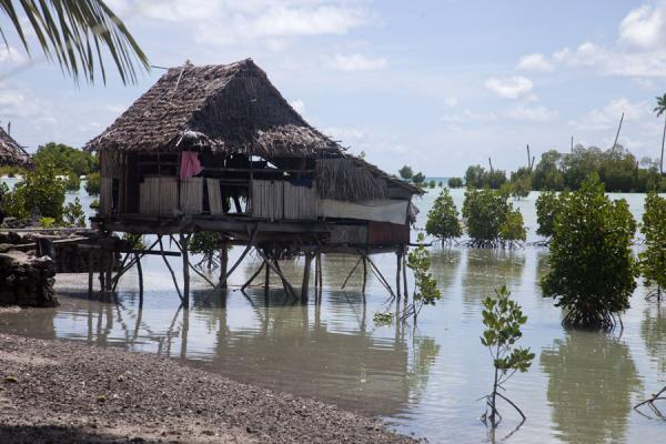 Foto van Thatched house on stilts at the village of TebunginakoAbaiang - Kiribati