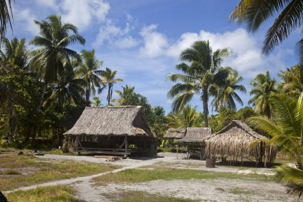 Picture of Abaiang Atoll (Kiribati): Thatched-roof houses in a compound on Abaiang islet