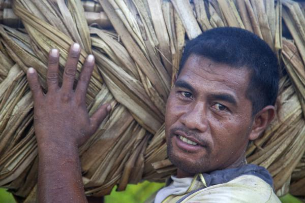 Guy in North Tarawa carrying pandanus leaves | Gente I-Kiribati | Kiribati