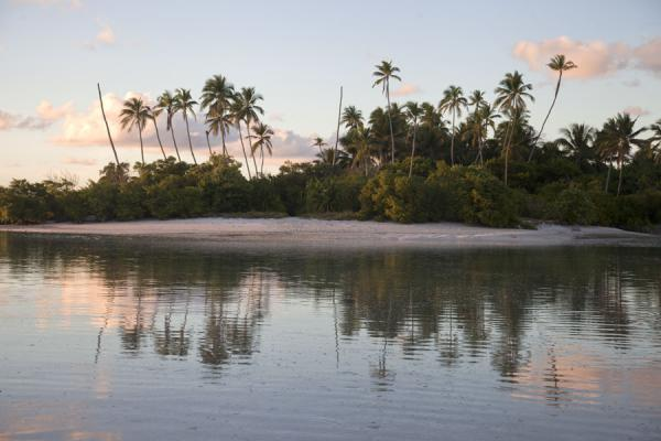 Reflection of palm trees in the upcoming water of high tide | Noord Tarawa | Kiribati