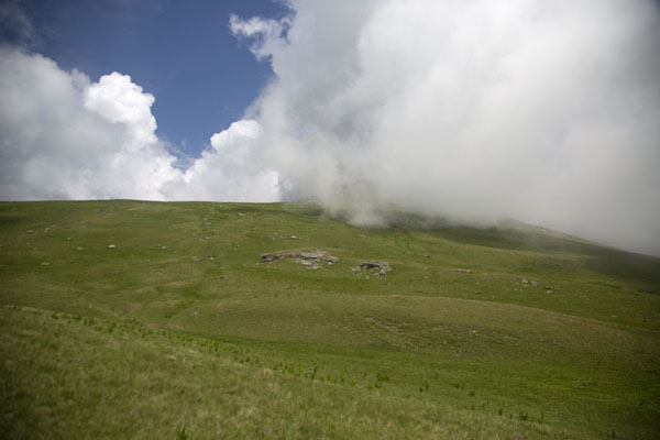Cloud on the gentle slopes of the higher Šar mountains | Rudoka e Madhe Peak |