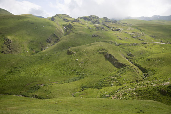 Picture of The Šar mountains at medium altitudeRudoka e Madhe - Kosovo