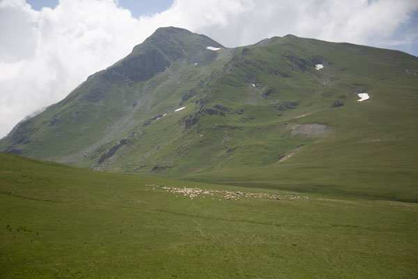 Picture of Looking up the higher Šar mountains with patches of snowRudoka e Madhe - Kosovo