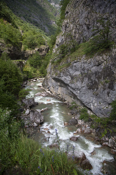 Looking into the canyon from one of the many viewpoints, with a wild Peć Bistrica river below | Rugova canyon | Kosovo