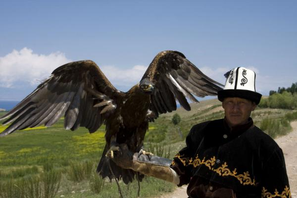 Tumara is ready for take-off i the hands of Talgar | Eagle hunting | Kyrgyzstan