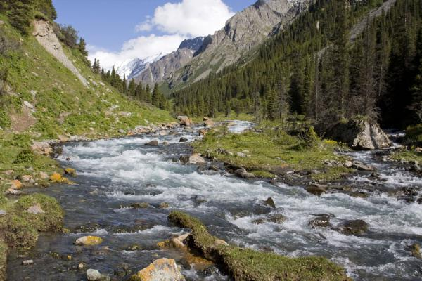 Picture of Lovely Ak-Suu river