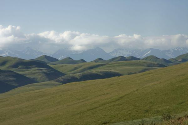 Picture of Torugart border crossing (Kyrgyzstan): The friendly landscape of the Kyrgyz side of the road to Torugart