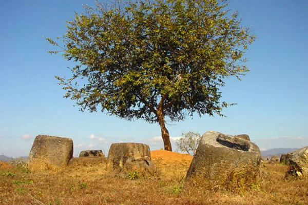 Picture of Plain of Jars (Laos): Jars in Plain of Jars