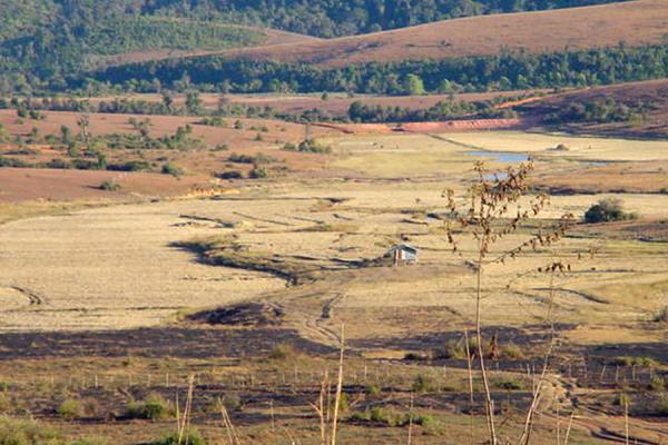 Picture of Landscape around Plain of JarsPlain of Jars - Laos