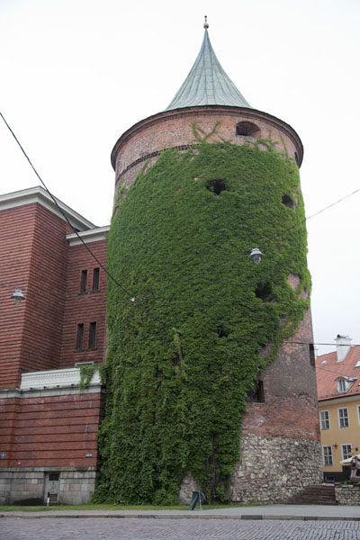 Powder tower overgrown with climbing plants | Riga Old Town | Latvia