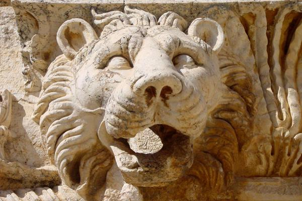 Foto di Example of sculpted lion, belonging to the Temple of JupiterBaalbek - Libano