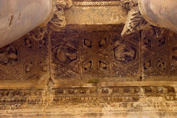 Picture of Baalbek: ceiling of the  Temple of Bacchus