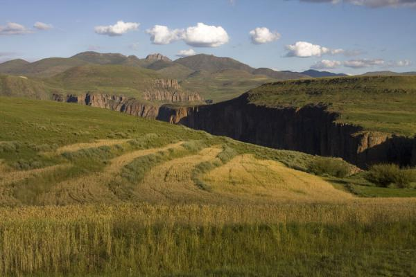 Picture of Semonkong hiking (Lesotho): Green, yellow and brown landscape near Semonkong
