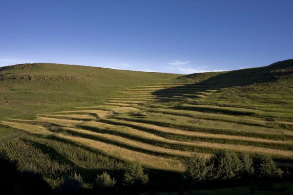 Terraced fields near the canyon | Semonkong hiking | 赖索托