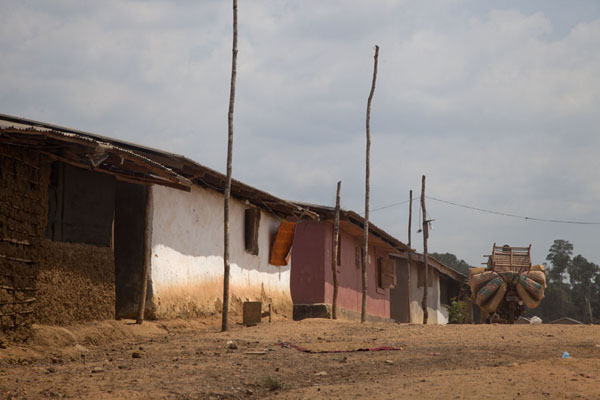 Foto di Row of painted houses in Kinjor - Liberia - Africa