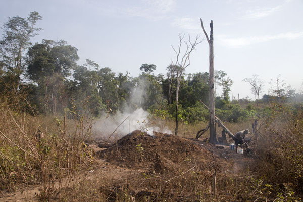 Turning wood into charcoal outside Kinjor | Kinjor Town | Liberia