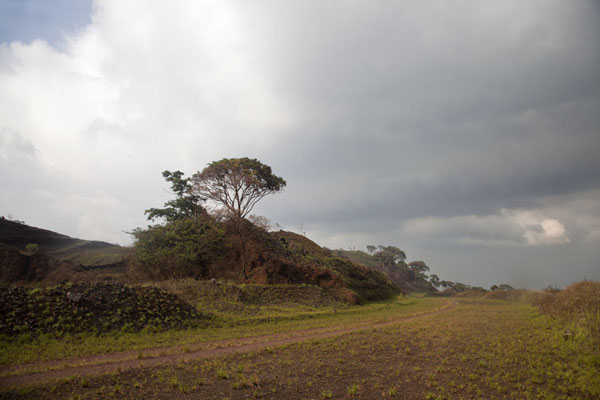 Photo de The ridge running on top of the Mount Nimba rangeMount Nimba Liberia - Libéria