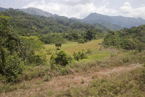 Picture of The Mount Nimba range with its green flanks