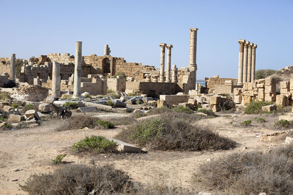 The oldest part of Leptis Magna with old forum and Punic remains | Leptis Magna | Libye