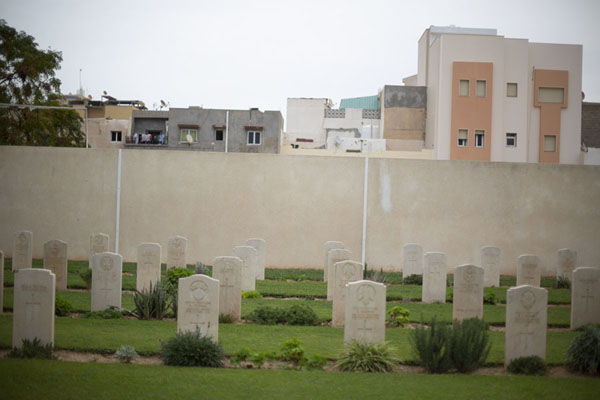 Some of the tombs with a modern part of Tripoli in the background | Second World War Cemetery | 利比亚