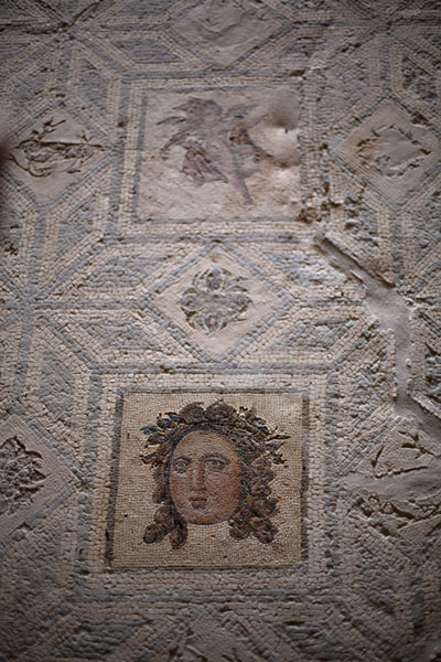 Foto van Mosaic in Villa Selene, with a cleaned headVilla Selene - Libië