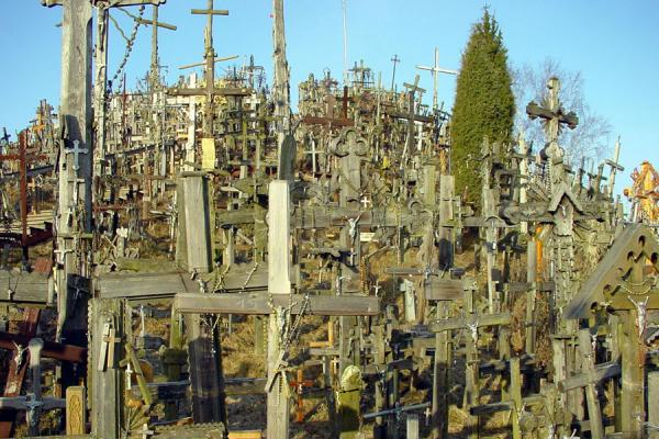 Picture of Hill of Crosses (Lithuania): Crosses in all sizes at Hill of Crosses