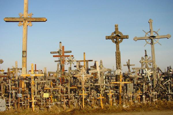 Picture of Hill of Crosses (Lithuania): Crosses high and low at the Hill of Crosses