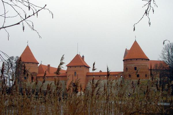 Photo de Castle seen through the reedChateau Trakai - Lituanie