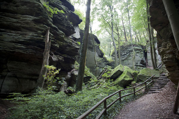 Trail through the climbing area of Berdorf | Berdorf rock climbing | Luxembourg