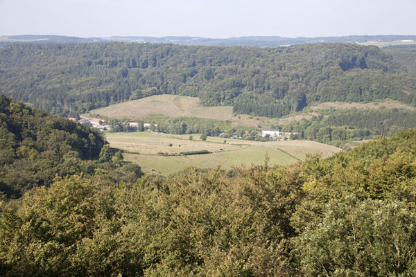 View from the top: forest and meadows | Berdorf montar rocas | Luxemburgo