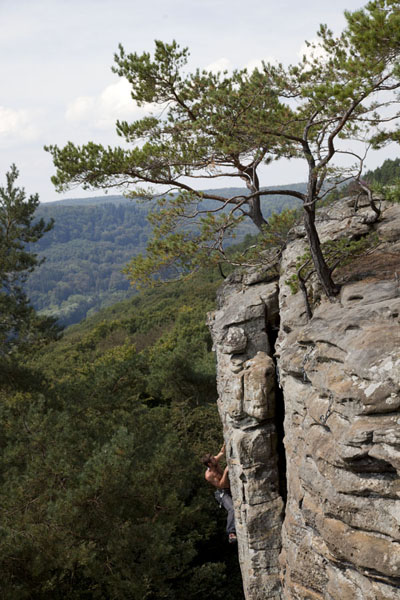 Foto van Climber reaching the top of one of the many climbing routes in BerdorfBerdorf - Luxemburg