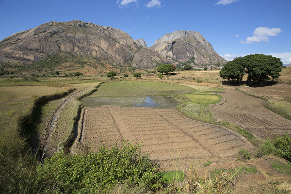 Agriculture at the base of the mountains | Anja | Madagaskar