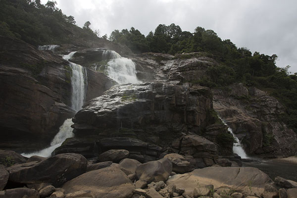 Picture of Ranomafana National Park