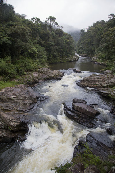 Picture of The Namorona river runs through the valley in which Ranomafana lies