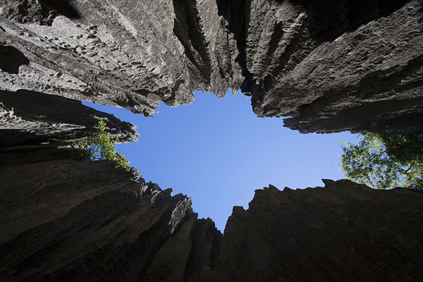 Looking up from inside the tsingy | Tsingy Bemaraha | Madagascar