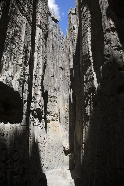 Picture of Tsingy Bemaraha (Madagascar): Inside the tsingy: narrow passage