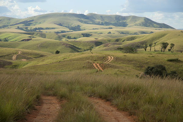 Dirt road meandering through a landscape of green hills | Tsiroanomandidy Ankavandra | Madagascar