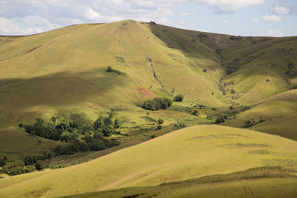 Patches of trees in small valleys on mountain slopes | Tsiroanomandidy Ankavandra | Madagascar