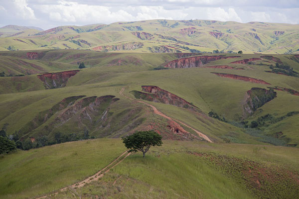 Picture of Erosion exposing the deep red colour of the earth through the green layer - Madagascar - Africa