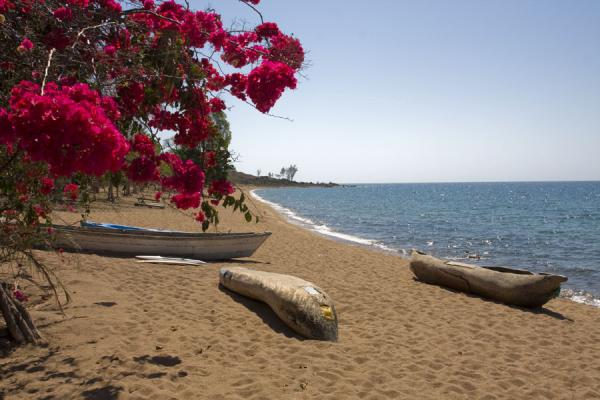 Dug-out canoes on a beach of Likoma Island | Likoma Island | Malawi