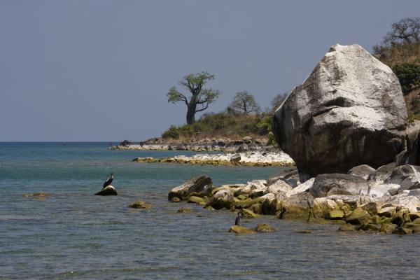 Picture of Trees, rocks, birds and water at the western side of Likoma Island